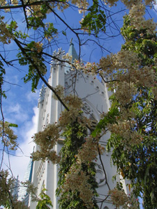 Puerto Princesa